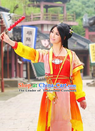 Traditional Ancient Chinese Swordsman Costumes for Women