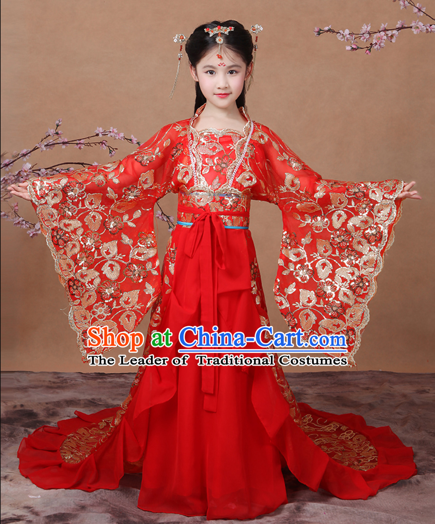 Ancient Chinese Palace Royal Princess Costume Empress Costumes and Hair Accessories Complete Set for Girls