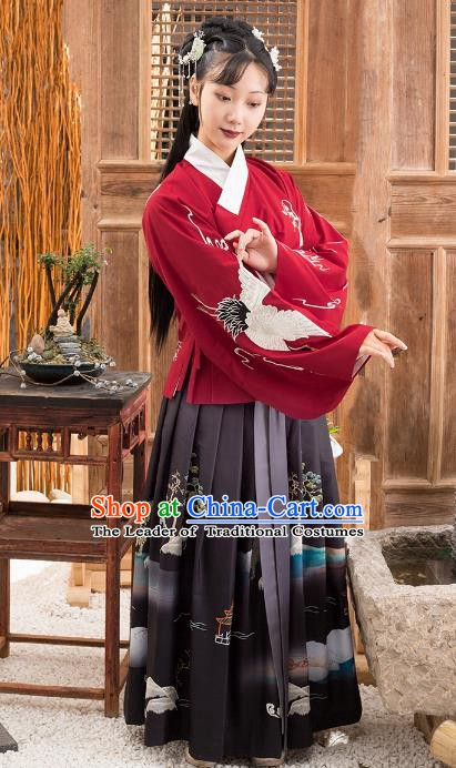 Traditional Chinese Ming Dynasty Palace Princess Costume Embroidered Blouse and Skirt Complete Set for Women