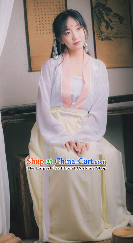Chinese Ancient Peri Hanfu Dress Tang Dynasty Nobility Lady Costumes for Women