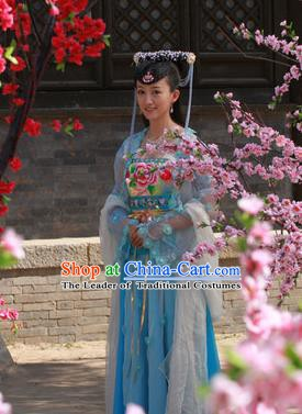 Ancient Chinese Ming Dynasty Palace Princess Embroidered Dress Historical Costume for Women