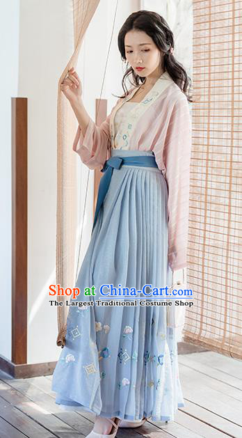 Traditional Chinese Song Dynasty Young Lady Costumes Ancient Embroidered Hanfu Dress for Women
