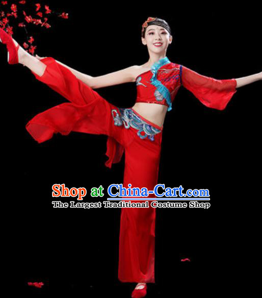 Traditional Chinese Folk Dance Single Sleeve Costumes Fan Dance Yangko Dance Red Clothing for Women