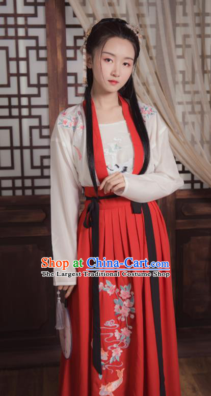 Ancient Chinese Song Dynasty Young Lady Replica Costume Traditional Swordswoman Embroidered Hanfu Dress for Women