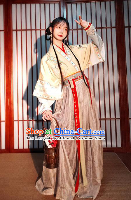 China Ancient Village Girl Embroidered Hanfu Dress Traditional Song Dynasty Country Lady Historical Costumes