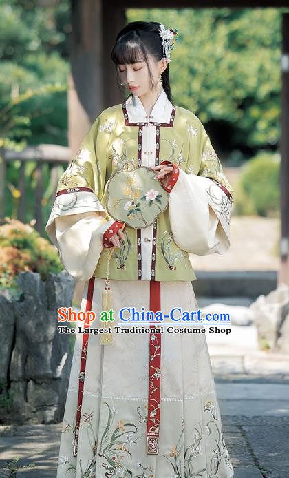 China Ancient Palace Infanta Costumes Traditional Ming Dynasty Court Princess Embroidered Clothing Complete Set