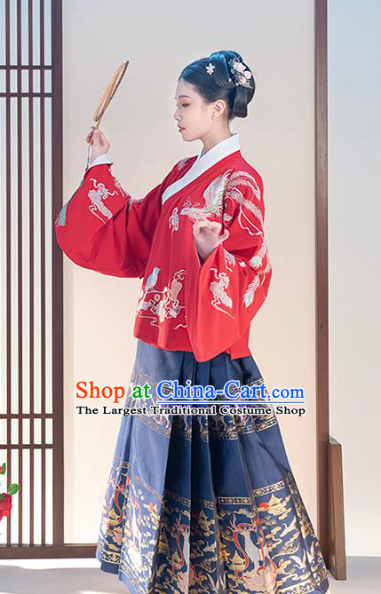 Chinese Traditional Ming Dynasty Patrician Lady Apparels Ancient Hanfu Dress Historical Costumes Red Blouse and Navy Blue Skirt Complete Set