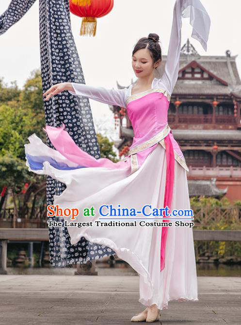 Traditional China Classical Dance Clothing Stage Show Costumes Pink Blouse and Skirt Outfits